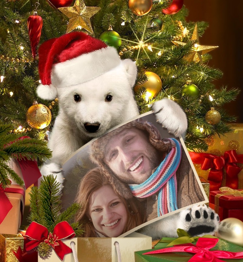 Xmas card with baby bear created online on Funny.Pho.to