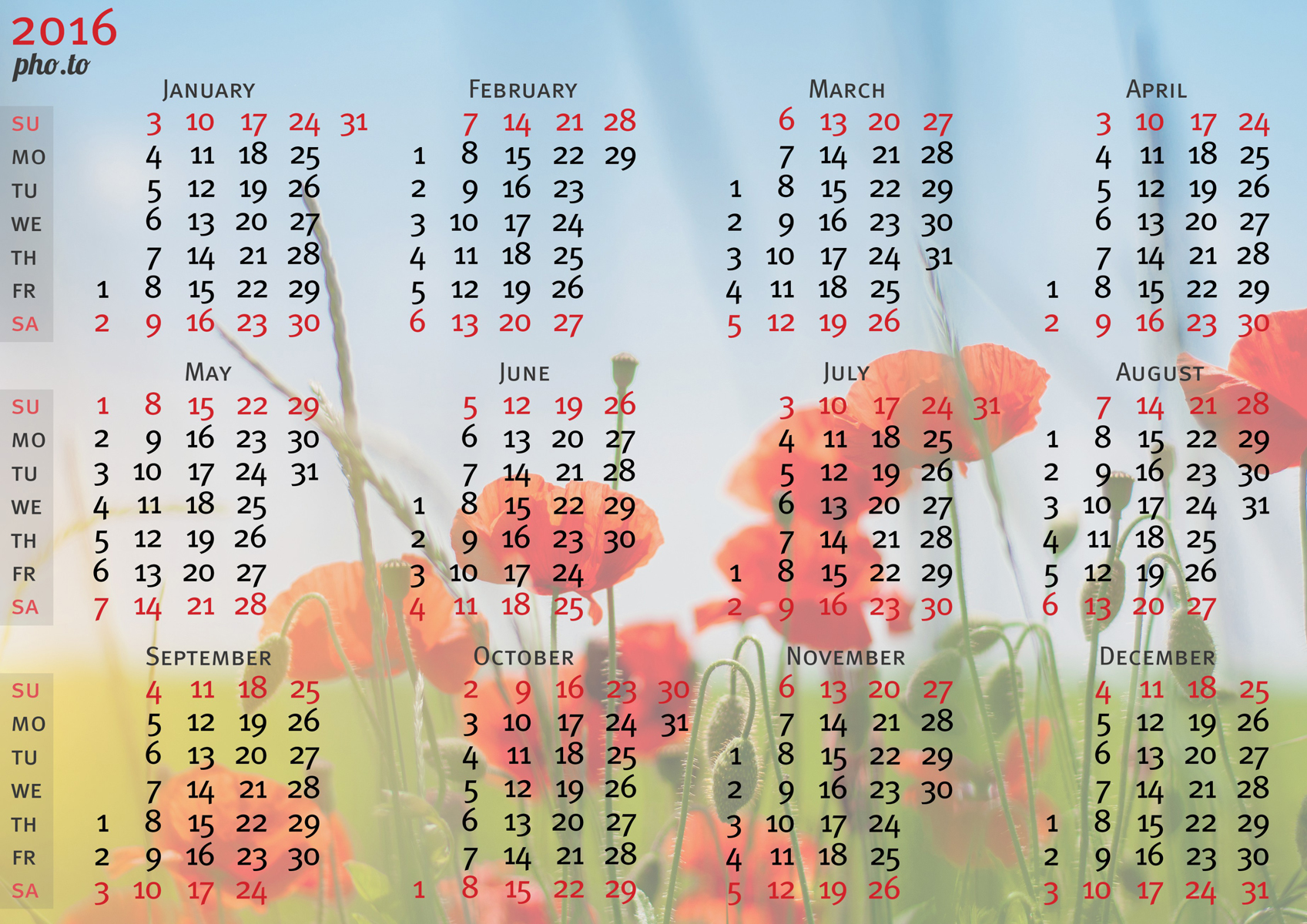 Lovely poppy flowers' photo was used to  design this personalised photo calendar.