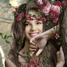 Myrtle Tree Fairy