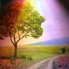 Regenbogen Licht